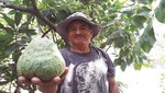 Proyecto de Cáritas y Enel mejora la productividad agrícola de más de 200 familias de Callahuanca