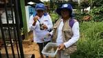 Acciones preventivas permiten disminuir la aparición de nuevos casos de zika y dengue en Piura