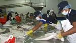 TLC con Unión Europea impulsó generación de empleo en el Perú