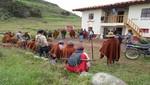 SERNANP reforesta con quenuales en Santuario Nacional de Calipuy