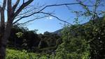 San Martín cuenta con octava Área de Conservación Privada: ACP Las Naranjas