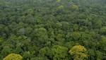 MINAM dicta medidas para conservar patrimonio natural