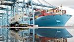 Maersk Line optimiza la exportación de paltas en Perú a través de nuevas tecnologías
