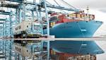Las innovaciones reefer de Maersk Line lideran el camino para la exportación de pota en el Perú