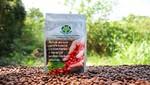 Café del Bosque de Protección Alto Mayo destaca en competencia 'Taza de Excelencia 2018'