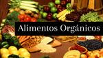 La alimentación orgánica reduce sensiblemente los riesgos de contraer cáncer