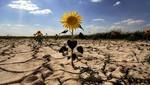 Un informe federal dice que los impactos del cambio climático en EE.UU se están intensificando