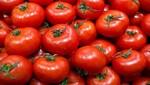 México dice que las tarifas harán que los precios del tomate suban en los Estados Unidos