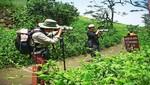 Sernanp: Empezó la temporada de lomas en la Reserva Nacional de Lachay