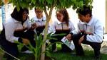 Estudiantes de COAR diseñan proyecto de riego agrícola alimentado con energía solar