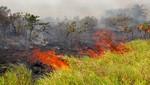 Bolivia: se emite Declaratoria de Desastre por incendios forestales en el departamento de Santa Cruz