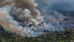 Austria rechaza el acuerdo comercial entre la UE y el Mercosur por incendios en la Amazonía