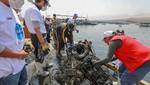 PRODUCE ha recolectado este año más de 45 toneladas de residuos sólidos del mar en campañas de limpieza