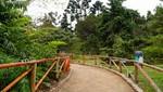 Jardín Botánico del Parque de Las Leyendas reabre sus puertas