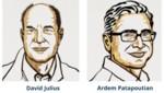 Premio Nobel de Medicina 2021 para David Julius y Ardem Patapoutian por los receptores de la temperatura y el tacto