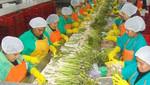 Número de compañías peruanas que exportan a China será el doble el 2012