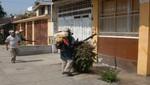 Fumigan casas en La Molina para combatir el dengue