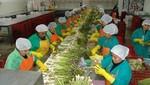 FMI: Perú cosechará los frutos de la estabilidad económica