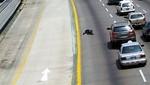 Persona no recibió ayuda tras ser atropellada en la Vía Expresa
