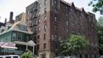 Nueva York: confiscan 800 plantas de marihuana en el Bronx