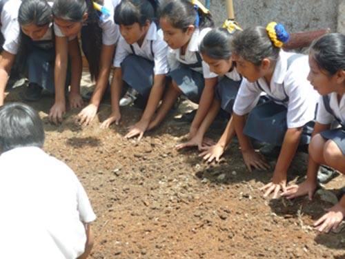 Instalación de los Biohuertos Educativos Abiertos