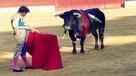 ¿Usted considera una tradición peruana las corridas de toros?