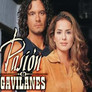 Pasin de gavilanes